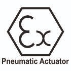 Atex - Pneumatic  Actuator Certificate
