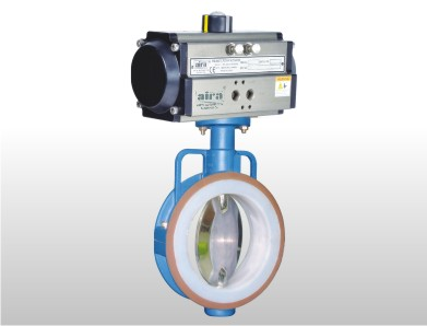 PTFE SLEEVE With Mirror Finish Disc Butterfly Valve